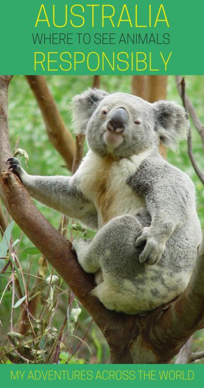 Find out 7 places to visit in Australia - via @clautavani