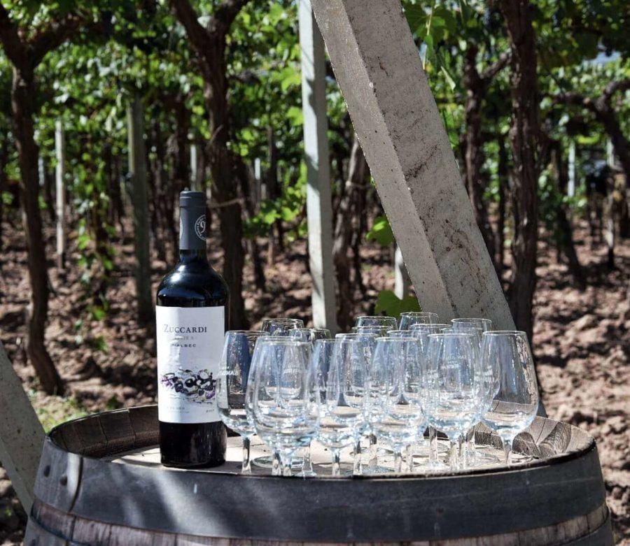 13 Fantastic Wineries In Mendoza